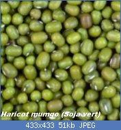 Cliquez sur l'image pour la voir en taille réelle  Nom : haricot-mungo-graine-150x150.jpg Affichages : 19 Taille : 50,5 Ko ID : 121758