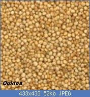 Cliquez sur l'image pour la voir en taille réelle  Nom : quinoa-150x150.jpg Affichages : 20 Taille : 52,0 Ko ID : 121759