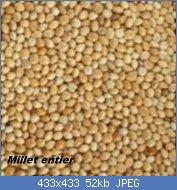 Cliquez sur l'image pour la voir en taille réelle  Nom : graines_millet-150x150.jpg Affichages : 17 Taille : 52,4 Ko ID : 121762