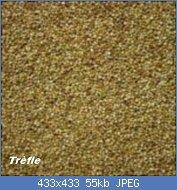 Cliquez sur l'image pour la voir en taille réelle  Nom : Trefle-incarnat-150x150.jpg Affichages : 17 Taille : 54,6 Ko ID : 121776