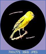Cliquez sur l'image pour la voir en taille réelle  Nom : hqdefault.jpg Affichages : 103 Taille : 36,1 Ko ID : 119680