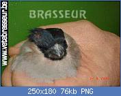 Cliquez sur l'image pour la voir en taille réelle  Nom : sans-titre1.png Affichages : 128 Taille : 75,6 Ko ID : 111214