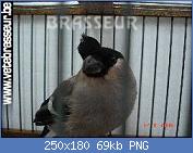 Cliquez sur l'image pour la voir en taille réelle  Nom : sans-titre2.png Affichages : 125 Taille : 69,2 Ko ID : 111215