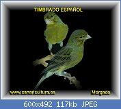Cliquez sur l'image pour la voir en taille réelle  Nom : timbrado.jpg Affichages : 300 Taille : 117,2 Ko ID : 99422