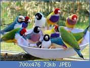 Cliquez sur l'image pour la voir en taille réelle  Nom : 1013792.jpg Affichages : 19 Taille : 72,9 Ko ID : 118528
