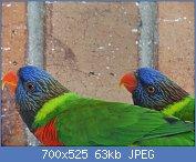 Cliquez sur l'image pour la voir en taille réelle  Nom : DSC01573.jpg Affichages : 263 Taille : 63,4 Ko ID : 104605