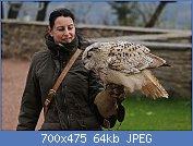 Cliquez sur l'image pour la voir en taille réelle  Nom : 1280px-Vogelflugschau_im_Schloß_Augustusburg._2H1A8604WI.jpg Affichages : 3 Taille : 64,4 Ko ID : 121941
