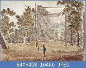 Cliquez sur l'image pour la voir en taille réelle  Nom : Passenger_Pigeon_Net_Cockburn_1829.jpg Affichages : 4 Taille : 103,5 Ko ID : 121975