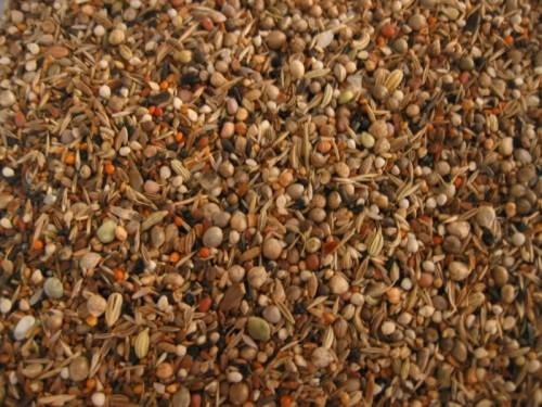Les graines de sante au paradis des canaris a vos - Graine de piment oiseau ...