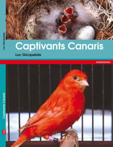 captivants_canaris.jpg