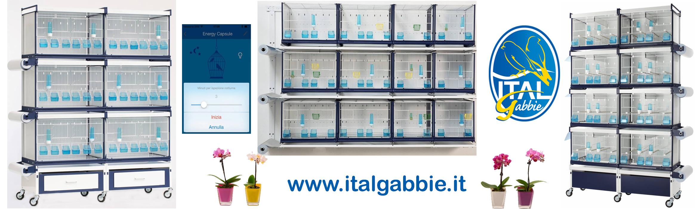 Italgabbie - Cages pour vos Oiseaux !